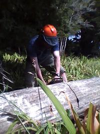 sawing.jpg
